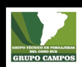 Grupo Campos